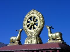 Roue-du-dharma.jpg