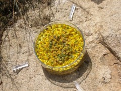 P7080083.JPG elixirs floraux.JPG