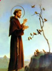 saint François.jpg